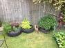 Herb tyres